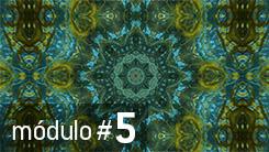 Módulo # 5