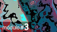 Módulo #3